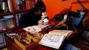 Numismática online
